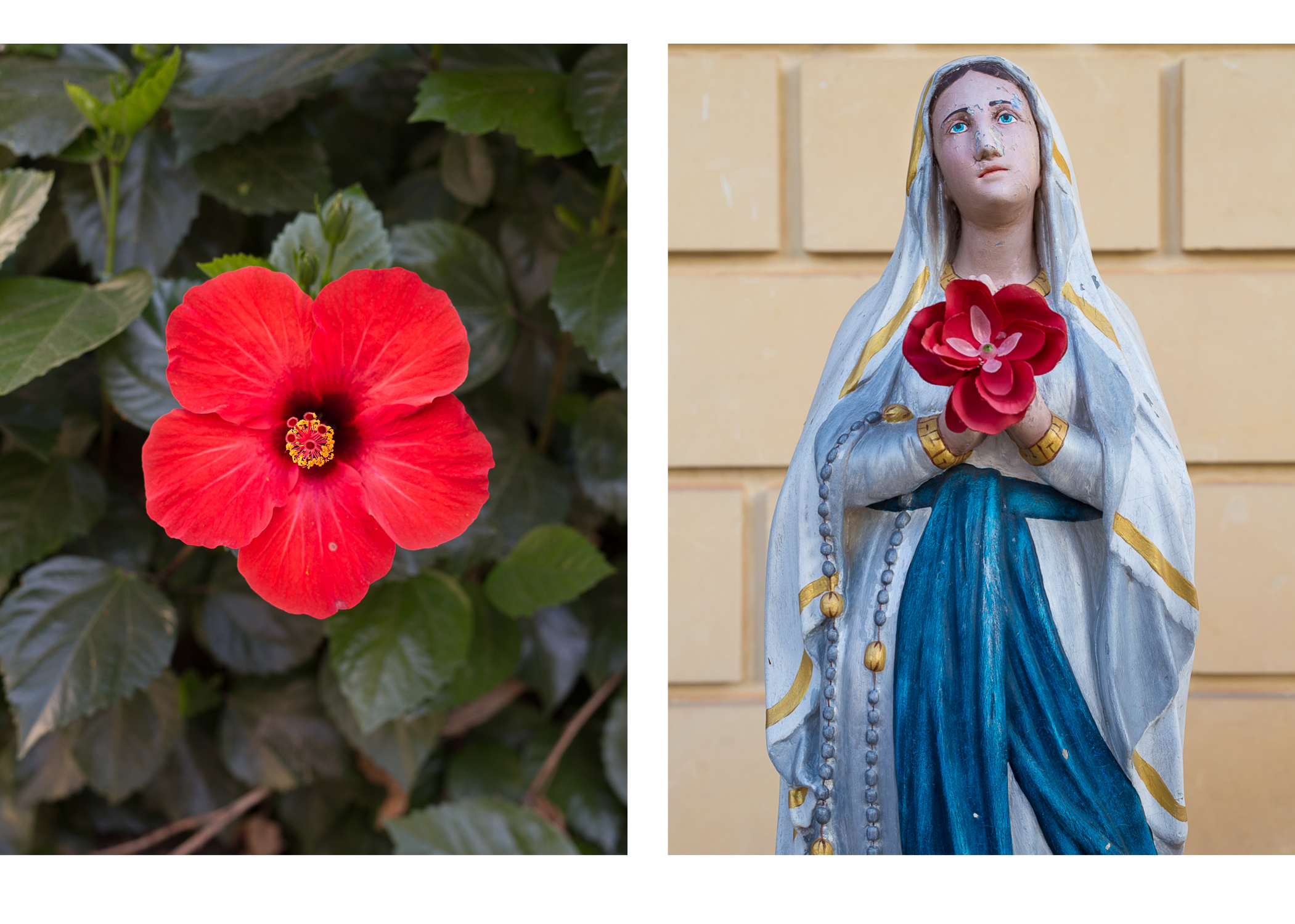 Calypso's Cave ~ Ave Mria & Flower diptych