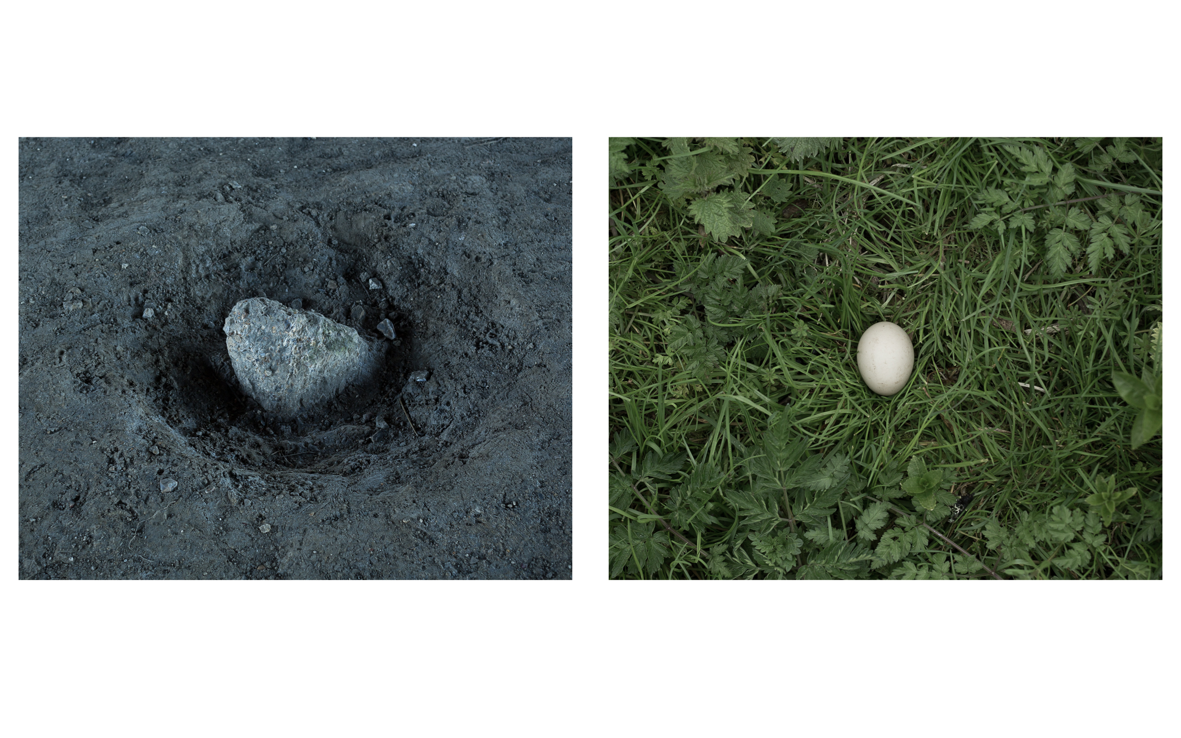 MAP6 Word Project _ Fragile Egg & Rock diptych (b)