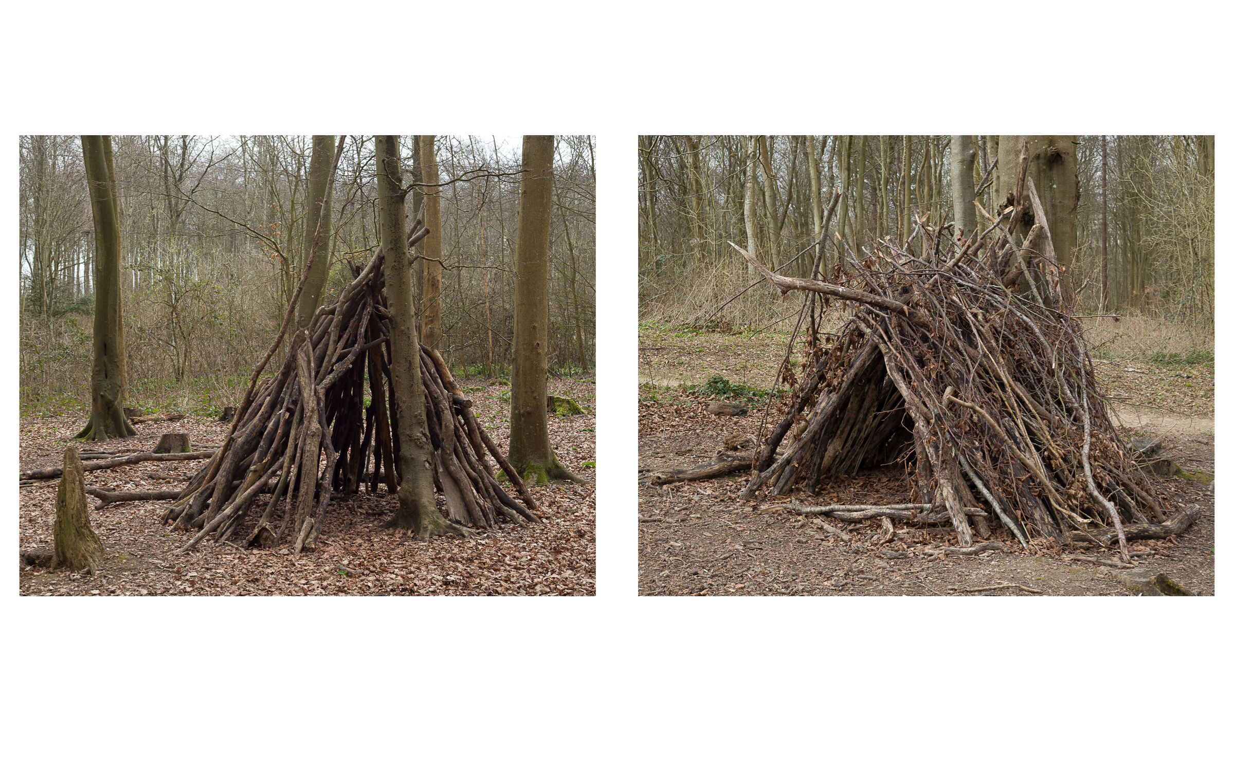 MAP6 Word Project _ Fragile  Environment (diptych)