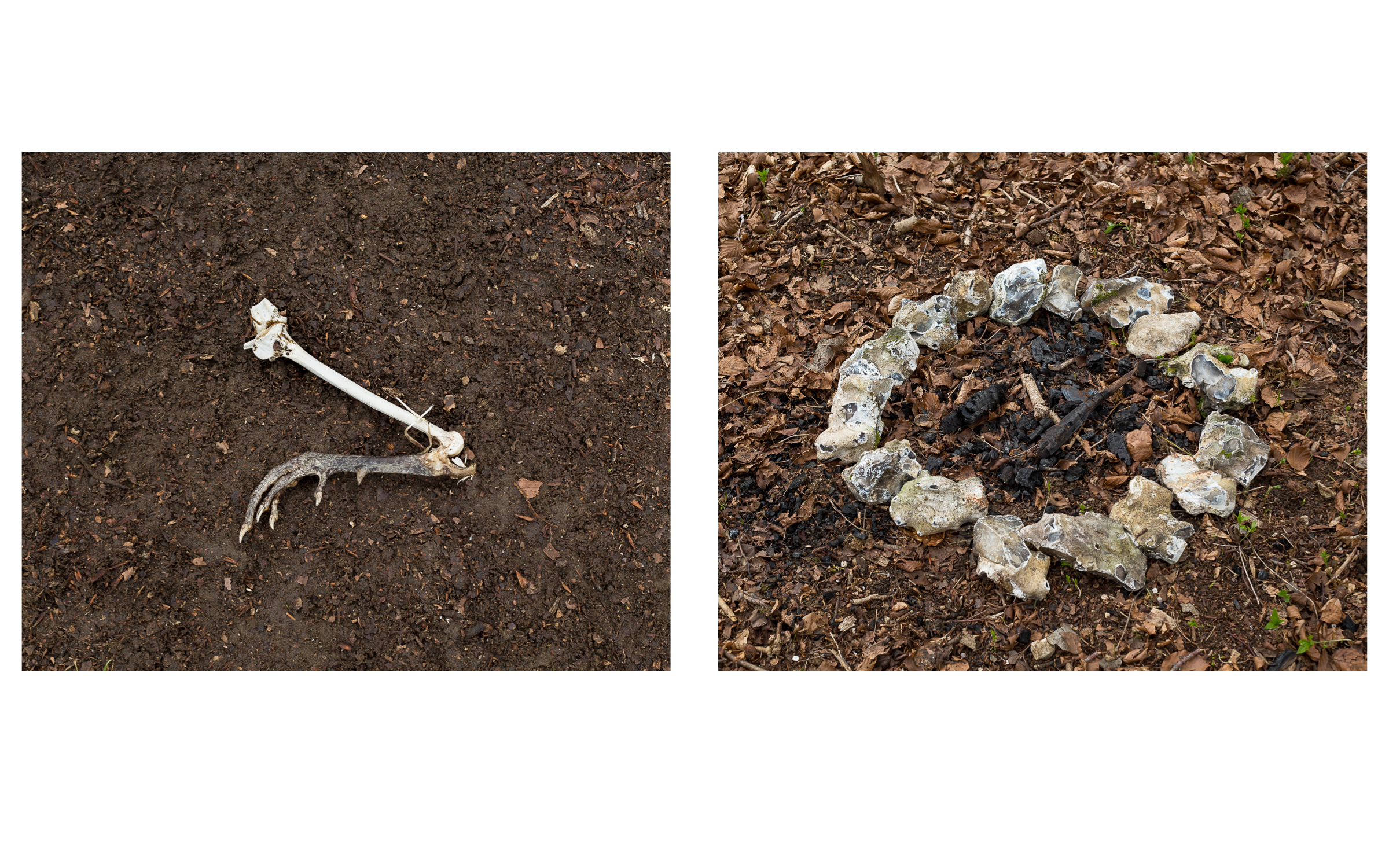 MAP6 Word Project _ Ritual 2 (diptych) (1)