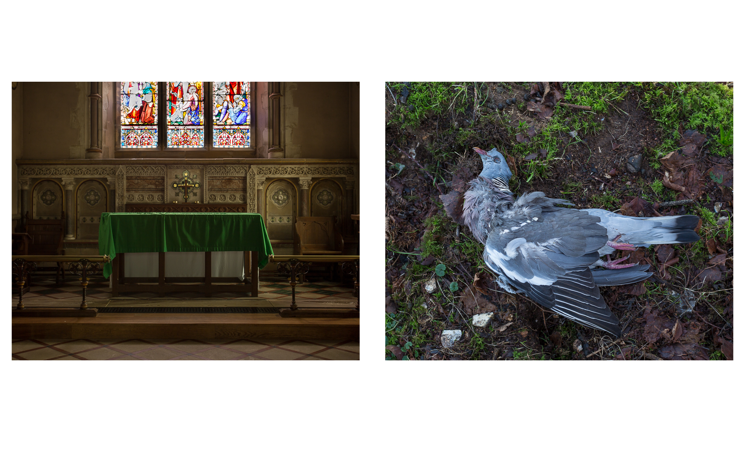 MAP6 Word Project _ Ritual (diptych) (1)
